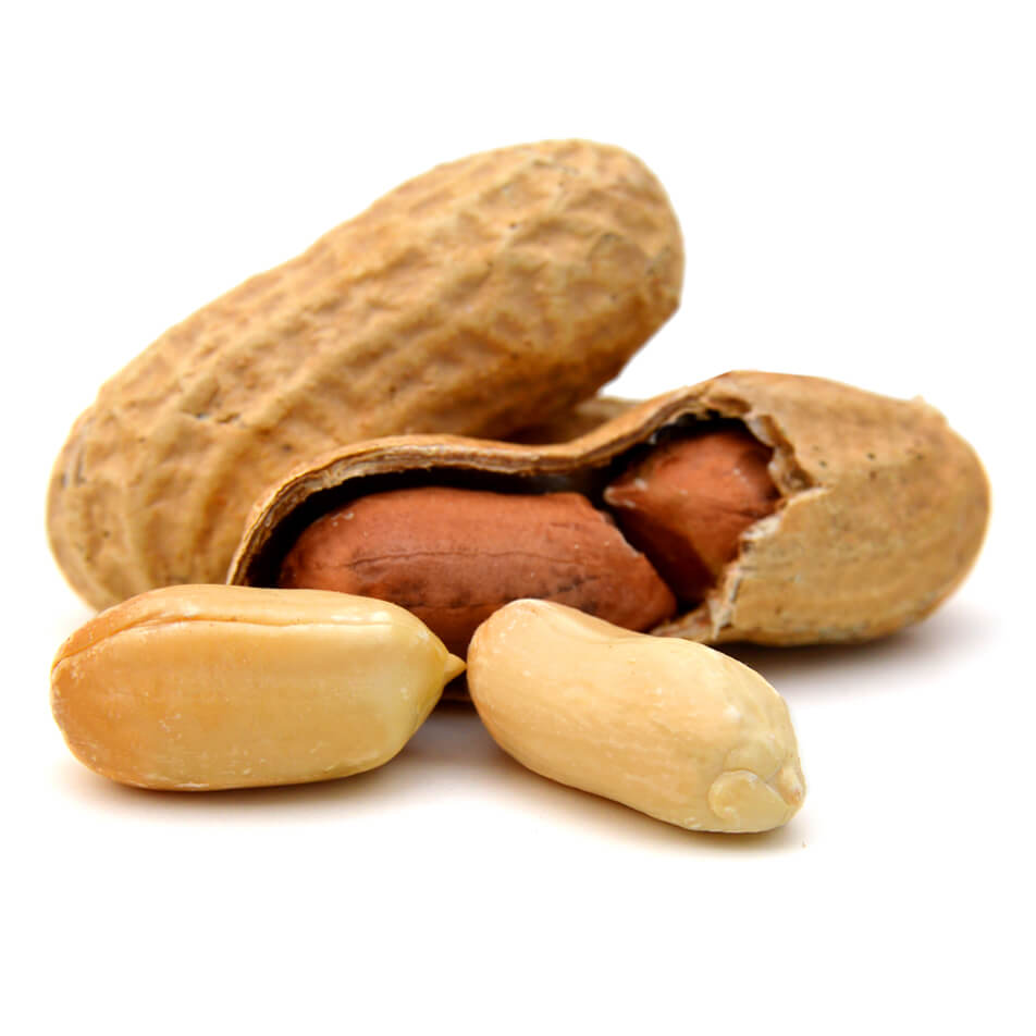 <strong>Peanuts</strong><br> are widely believed <br> to come from Brazil. <br> However, the first mentions of <br> them date back to 950 AD in Africa.