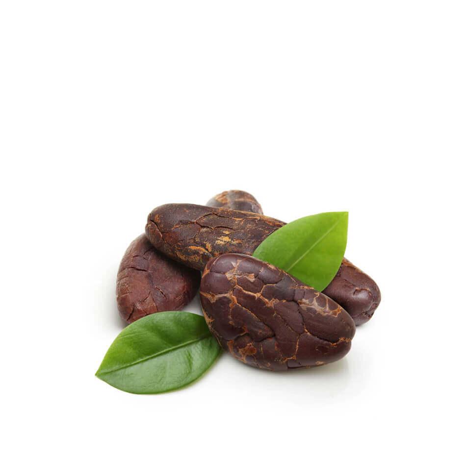 Ziarno kakaowe